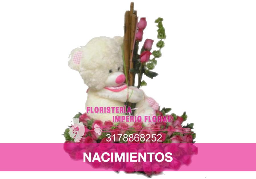 home_nacimientos
